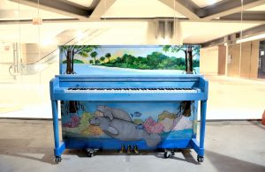 Piano Painting Harmony on Earth by DIANE TONELLI